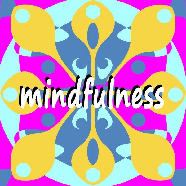Mindfulness Camp